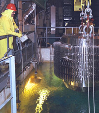 Working with a Spent Nuclear Fuel assembly